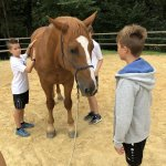 Foto-08.08.19-11-06-46
